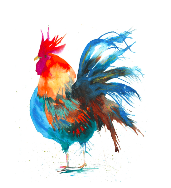 unique gifts of a watercolour cockerel