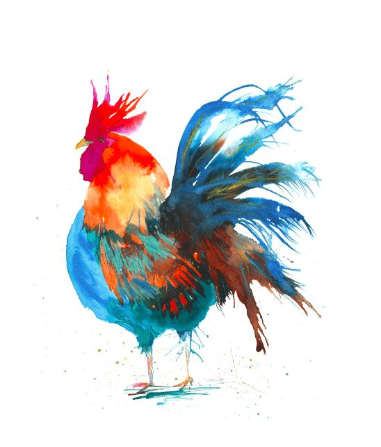 unique gifts of a watercolour cockerel