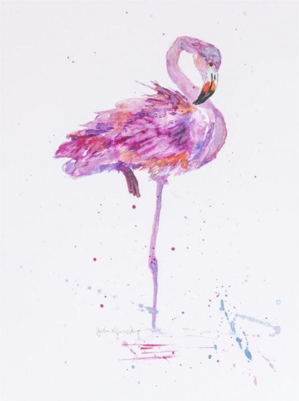 flamingo watercolour
