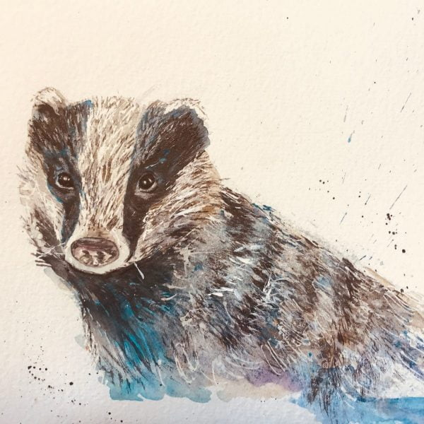 Watercolour badger