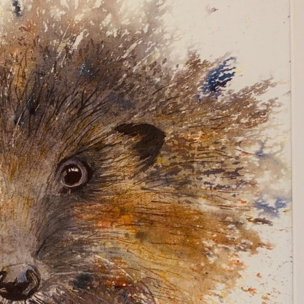 hedgehog painting