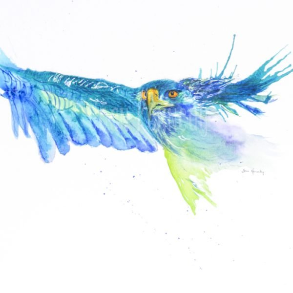 eagle watercolour