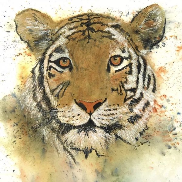 Tiger watercolour