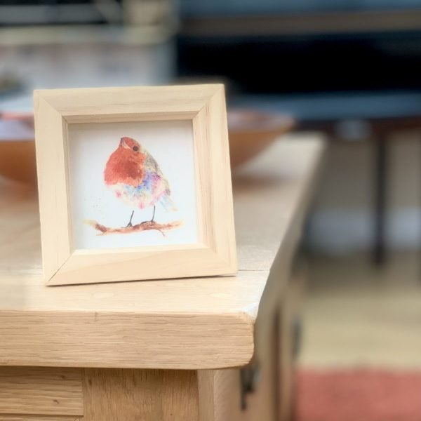 framed mini robin picture
