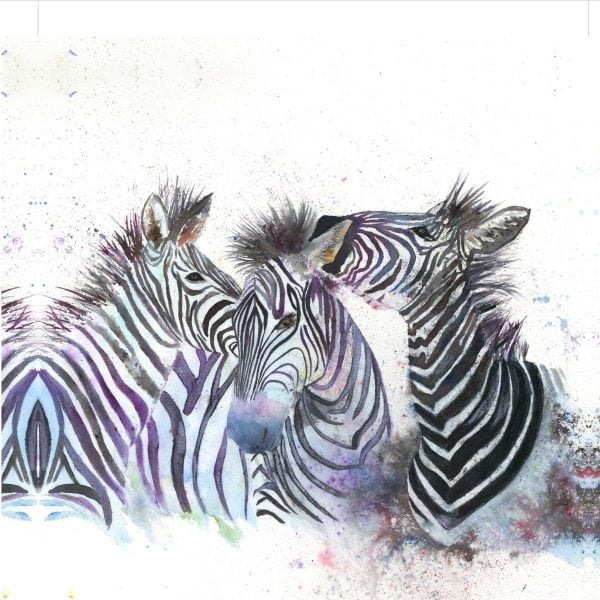 three zebras canvas