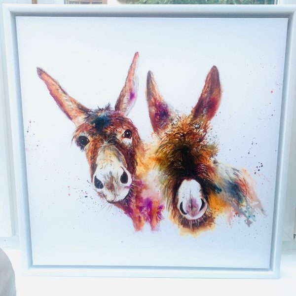 Framed two donkeys