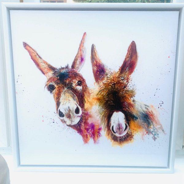 Framed two donkeys