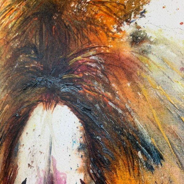 hairy donkey
