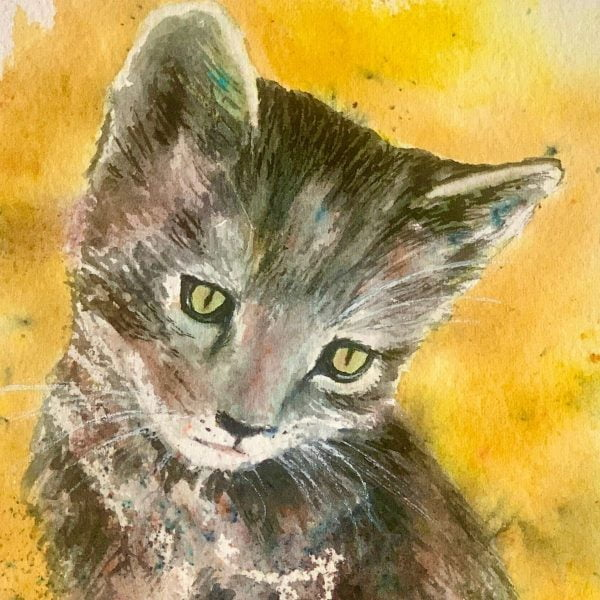 face of cat watercolour
