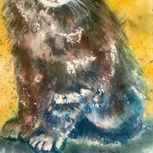 close up of fur watercolour